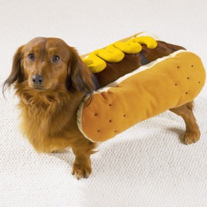 Cãochorro-quente