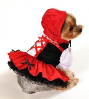 Cãopeuzinho Vermelho