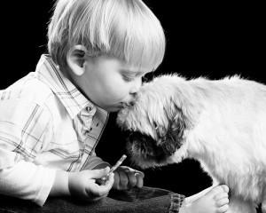 Ligação entre cães e humanos