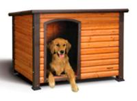 Casa de cachorro de madeira